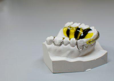 Placca di howlay per ortodonzia mobile